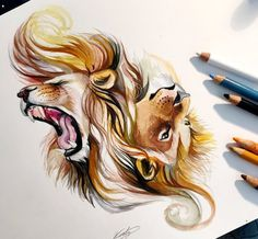 Colored Pencil drawing Art By Katy Lipscomb #pencil art #drawing art #pencil drawing