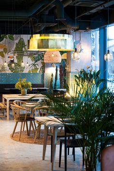 Kane World Food Studio Architect Bogdan Ciocodeica