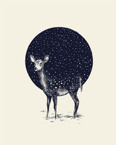 """Snow Flake"" illustration by Daniel Teixeira on behance"