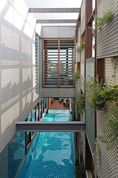 North Bondi House by CplusC Architectural Workshop 11