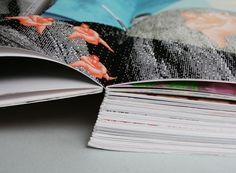 Paint Horse aus Pleasure Line? – 140 elementare Fragen des Lebens #editorial #print #book