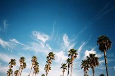 Evan Perigo on inspcollection #photography #art #nature