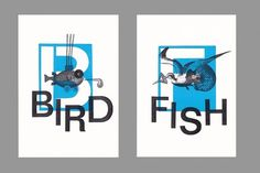 bird fish : Guilherme #negative #fish #bird #stencil #illustration #sea #helvetica #collage #typography