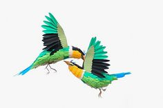 New Paper Birds and Wildlife by Diana Beltran Herrera | Colossal #papercraft #birds