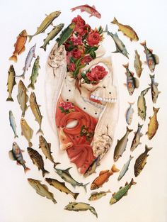 """pisces"" cut paper anatomical collage art by bedelgeuse"