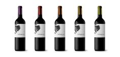 Bodegas Viñamonte // Identity & Packaging #packaging #vino #wine #tenerife #dailos #canarias