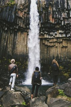 Svartifoss Waterfall / Southern Iceland. #photography #waterfall