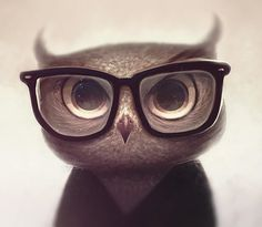 Nerdy Owl by vincenthachen on deviantART #digital #illustration #painting
