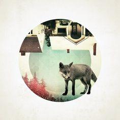 Foxy Friday - RK Design #fox #digital #illustration #nature #circle #collage