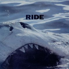 Ride-Today-Forever---A-460491.jpg 500×501 pixels