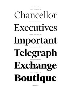 Financier Typeface Family by Klim Type Foundry / Kris Sowersby / AGDA Awards