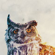Double-Exposure Animal Portraits By Norwegian Photographer #illustration