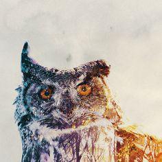 Double-Exposure Animal Portraits By Norwegian Photographer #illustration