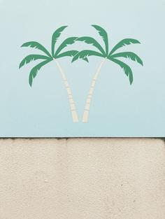 #island #texel #netherlands #roadtrip #afterbeach #palmtrees PHOTOGRAPHIE © [ catrin mackowski ]