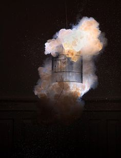 Photobucket #explosion #burn #bird #cage #pyrotechnique #fire #dark