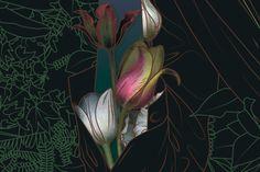 Tulips. Detail by Maria Umeiwska #art #flower #tulip #nature