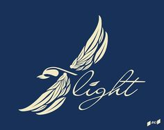 | -F L I G H T- design I made while listening too... #flight