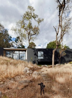 Cadaval & Solà-Morales Designs a Y-Shaped House in the Deep Forests of Mexico 1