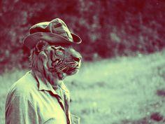 Animals #photography #animals