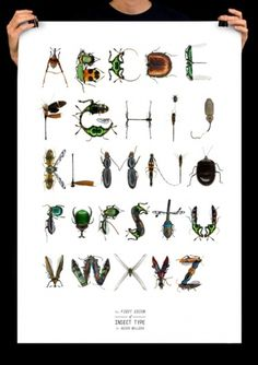 Insect Type - asier belloso #type #white #poster #insect