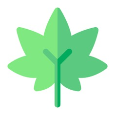See more icon inspiration related to Weed, leaf, drug, cultures, healthcare and medical, botanical, Cannabis, Marijuana and nature on Flaticon.