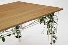 folk about #table #topiary