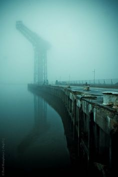 vSep13 #crane #fog #water #atmospheric #photography