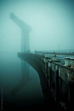 vSep13 #crane #fog #water #atmospheric #photography