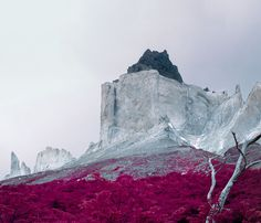 Landscape Art Photography + Prints - Reuben Wu #photography #infrared #landscape