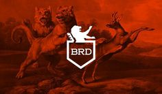 BR-DESIGN on the Behance Network #brd #branding