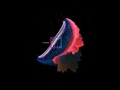 Chaotica Branding by Camilo Herrera – Inspiration Grid | Design Inspiration