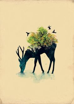 Illustrations by Budi Satria Kwan | Colossal #deer #notan #illustration #nature #forest