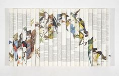 convoy #collection #birds #book