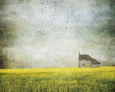Landscape Photography by Lesley Ann Mohamad | Professional Photography Blog #inspiration #photography #landscape