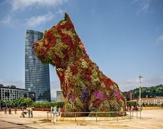 CJWHO ™ (Take me a Photo with the Little Doggy by Joseba...) #sculpture #installation #design #guggenheim #photography #puppy #art #bilbao #flowers #dog