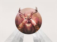 M.S.W.E.D. on the Behance Network #circle #minimal #dear
