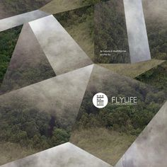 Posters for FlyLife© on the Behance Network #geometry #nurdinova #design #graphic #karina #poster #graphics