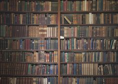 The Southerly #old #red #books #wood #brown #library #blue #shelves #shelf #green