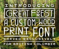 New Logo for Destination British Columbia #lettering #natural