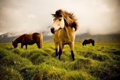 Travel Photography by Martin Sundberg » Creative Photography Blog #inspiration #photography #travel