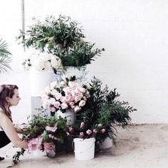 Likes | Tumblr #flower #roses