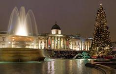 17 Christmas tree on Trafalgar Square in London UK