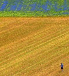 Nature photographs by Edmondo Senatore | Best Bookmarks #photography #landscape