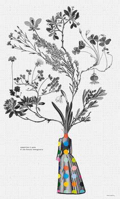 #plants #floral #engraving #poster