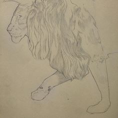 Pencil, Sketch, Illustration, Lion, Micheal Hanly