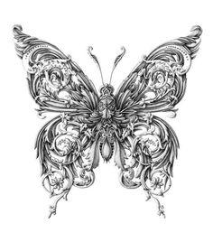 Little Wings illustration by Alex Konahin