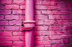 photo #photography #wall #magenta