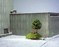Frank Kunert - Fotografien kleiner Welten - Galerie