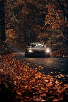 Leesburg, United States – Fall Drives on Country Roads