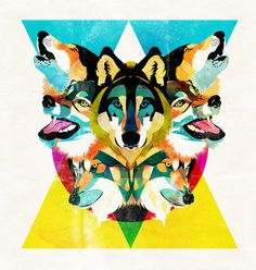 wolves by alvaro tapia hidalgo #wolves #tapia #hidalgo #alvaro